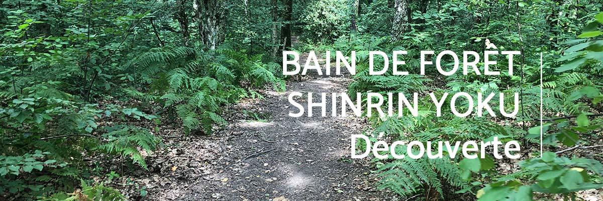 bain-foret-shinrin-yoku-sylvotherapie-decouverte