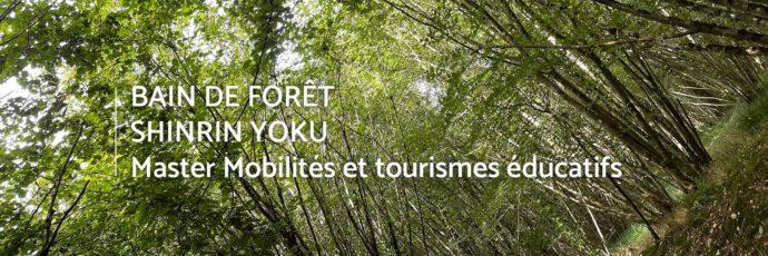 bain-foret-shinrin-yoku-sylvotherapie-caen-calvados-guide-certifie-master-mobilites-tourismes-educatifs
