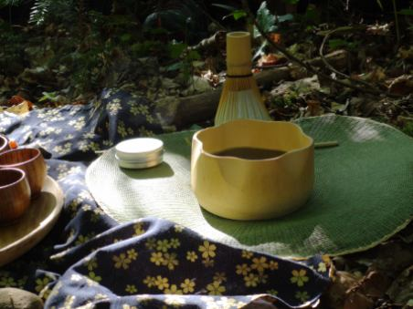 anne-lise-mommert-shinrin-yoku-sylvotherapie-bain-de-foret-detente-relaxation-grimbosq-guide-certifie-the-matcha